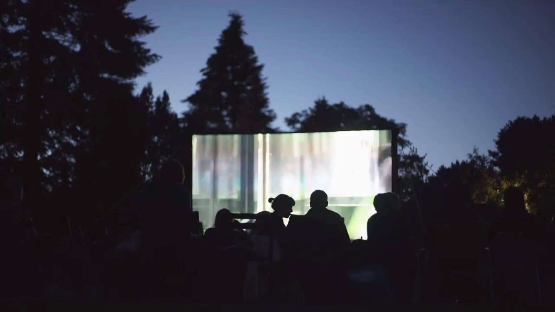 Lakeside Film Festival Vol.7 // POSTPONED TO 2021